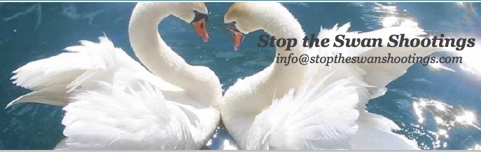 Stop the Swan Shootings